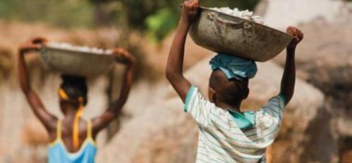 Combate ao Trabalho Infantil: Uma luta que precisa ser travada